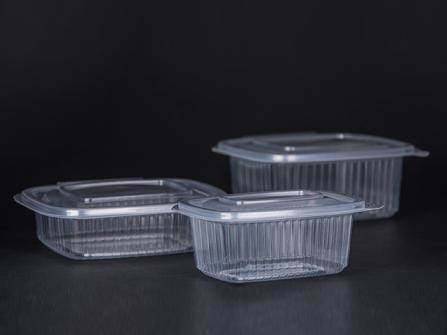 hinged-lid-containers.jpg